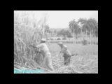 BBC «Громкие преступления XX-го века - Убийство Эрнесто Че Гевары (1967)» (Документальный, 2007)